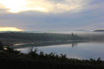 Trusk Lough 1