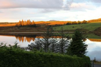 Trusk Lough 3