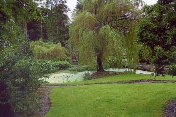 Dunmore Garden 1
